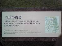 Image307.jpg