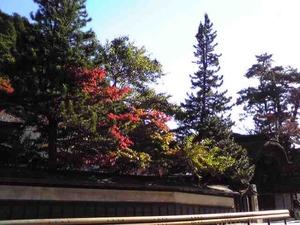 kouyasan1.jpg